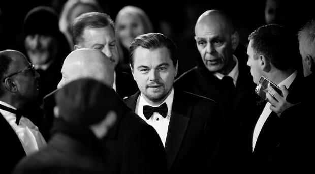 Leonardo DiCaprio attends the EE British Academy Film Awards at the Royal Opera House on February 14, 2016 in London, England. (Photo by Gareth Cattermole/Getty Images)