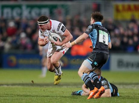 Defensive worry: top tackler Rob Herring, injured against Glasgow, is a doubt for Sunday's game against Scarlets