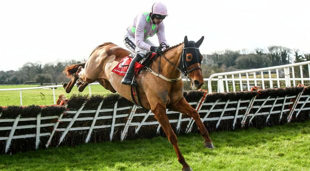 Power packed: Annie Power, with Ruby Walsh aboard, eases to victory at Punchestown yesterday and is now favourite for the Champion Hurdle after Faugheen's injury blow