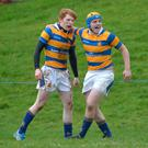 Feeling good: Bangor's Zach Kerr is congratulated after try in last round against Ballyclare