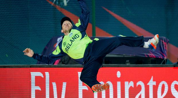 Field day: Paul Stirling fields for Ireland yesterday but to no avail as his side slipped to a shock opening defeat against Oman in the World Twenty20 in Dharmsala, India