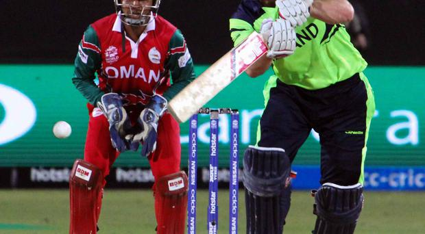Rallying call: Gary Wilson is certain that Ireland will come out fighting against Bangladesh