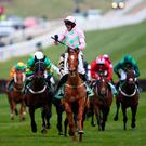 Festival fever: Ruby Walsh celebrates Annie Power's win in the Champion Hurdle