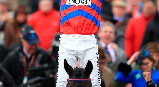 We've done it: Nico de Boinville after riding Sprinter Sacre to victory in the Queen Mother Champion Chase at Cheltenham