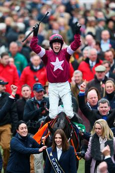 CHELTENHAM, ENGLAND - MARCH 18: Bryan Cooper on Don Cossack celebrates victory after winning the Timico Cheltenham Gold Cup Chase as part of the Cheltenham Festival at Cheltenham Racecourse on March 18, 2016 in Cheltenham, England. (Photo by Michael Steele/Getty Images)