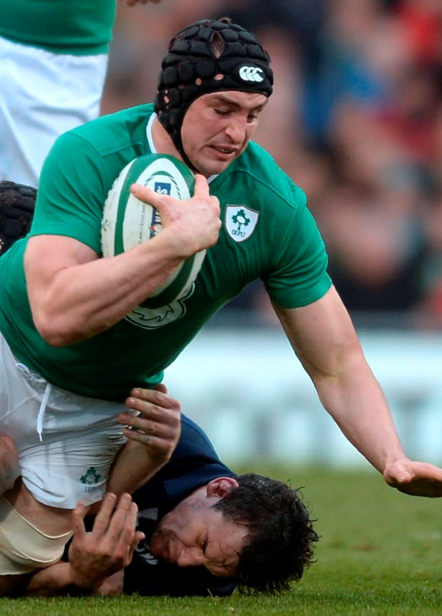Leader: Tommy O'Donnell has backed captain Rory Best