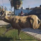 Grand Theft Auto V: Brent Watanabe's unstoppable death-proof deer is wreaking havoc on San Andreas. Image: Brent Watanabe/Twitch