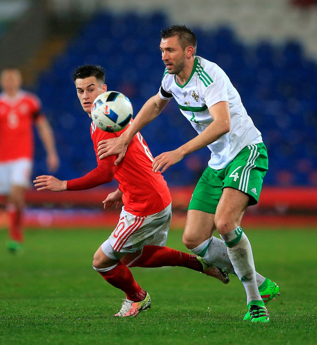 Sorry: Gareth McAuley held his hands up in Cardiff