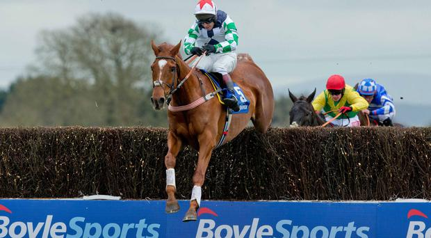 Rich pickings: Richard Johnson and Top Gamble on the way to winning the Normans Grove Chase at Fairyhouse yesterday