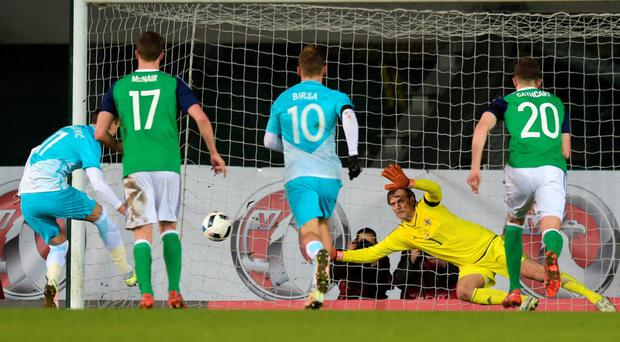 Net gains: Roy Carroll saved a Slovenian penalty and made a late stop to protect his clean sheet in the 1-0 triumph