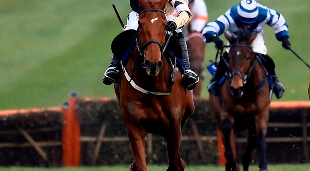 Ruby Walsh rides Yorkhill to victory in the Neptune Hurdle at the Cheltenham Festival