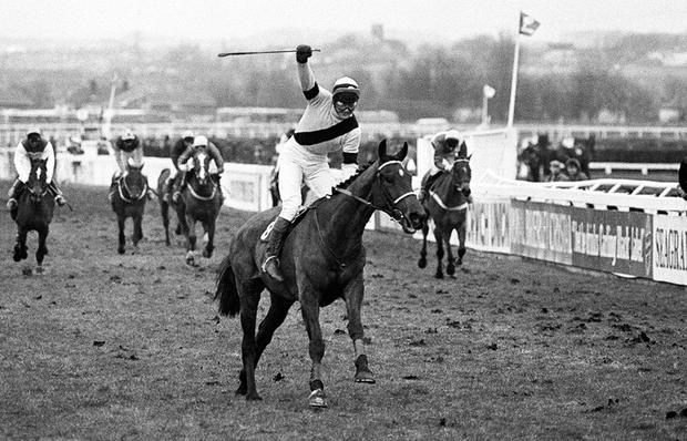 Picture perfect: Richard Dunwoody wins the 1986 Grand National on West Tip
