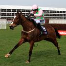 In the running: Vautour has been entered in the Bet365 Oaksey Chase at Sandown