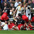 Roaring success: Mako Vunipola shows his delight after Saracens are awarded a penalty try in their Champions Cup semi-final victory over Wasps