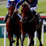 Jet powered: Air Force Blue is odds-on to win today's 2,000 Guineas at Newmarket