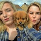 Lives online: Vivienne Ellis and her puppy Morgan and Kelly Harte taking a selfie. By 15 or 16 years of age some 90% of teenagers have a social media profile