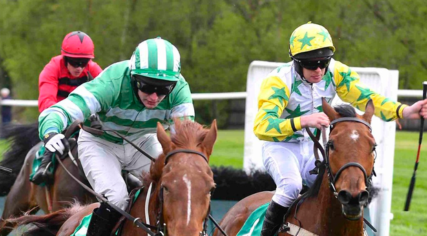 Pole position: Mystic Princess and Derek Fox land over the last on the way to winning Living The Dream Mares Handicap Hurdle at Downpatrick last night