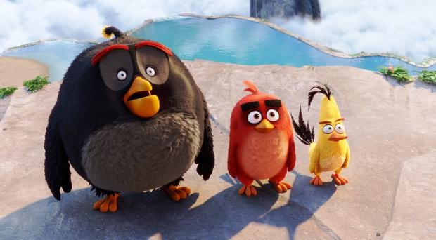 An image from The Angry Birds Movie. Photo: PA Photo/Sony