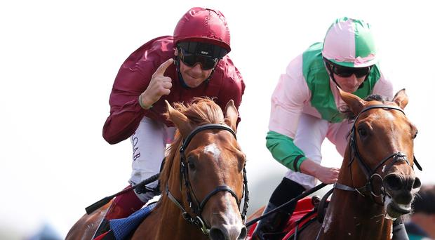 Number one hit: Frankie Dettori, who took a tumble yesterday, rides favourite Wings Of Desire in Saturday's Derby at Epsom