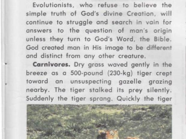 Image from Accelerated Christian Education textbook