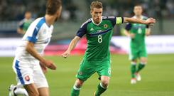 Class act: Steve Davis has starred for Northern Ireland ever since his debut
