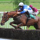 Local hero: Drumhart, trained by Colin McBratney of Crossgar, won at Downpatrick yesterday