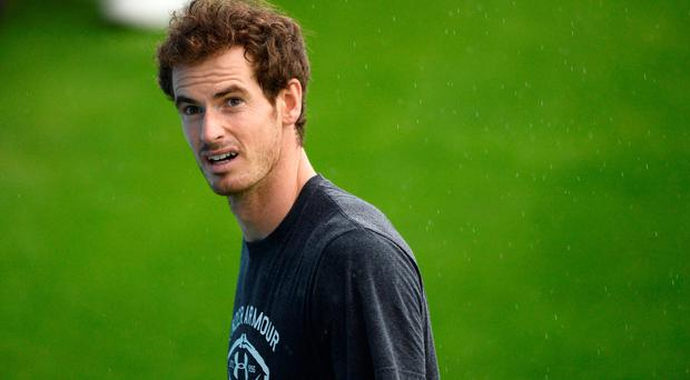 Out to grass: Andy Murray is gearing up for a Wimbledon challenge