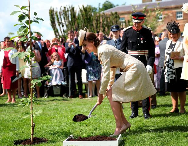 The Duchess of Cambridge plants a tree as she attends the Secretary of State for Northern Ireland Theresa Villiers' Garden Party at the royal residence at Hillsborough Castle, Co Down. PRESS ASSOCIATION Photo. Picture date: Tuesday June 14, 2016. The region's secretary of state has hosted the event annually since 1984. See PA story ROYAL Ulster. Photo credit should read: Brian Lawless/PA Wire