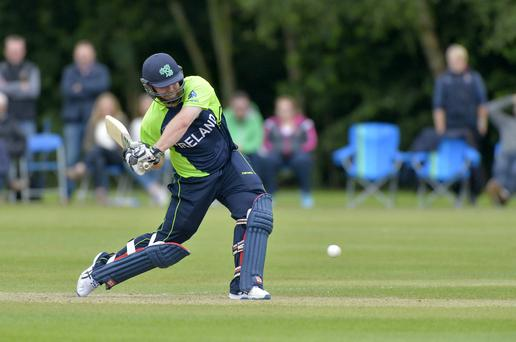 Up front: Paul Stirling can get Ireland off to a fast start against Sri Lanka