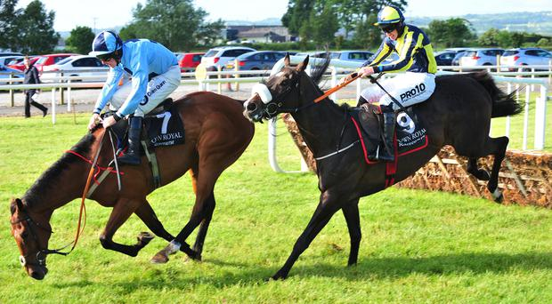 Safe hands: Andrew Lynch somehow manages to keep Our Dougal on track after a stumble to win the Taste @downroyal Maiden Hurdle from Tajseer, ridden by Jack Kennedy, at Down Royal last night in the opening session of the Magners Ulster Derby Festival