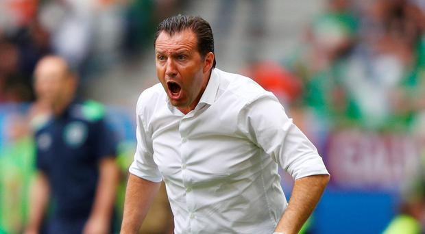 Under fire: Belgium manager Marc Wilmots has faced criticism