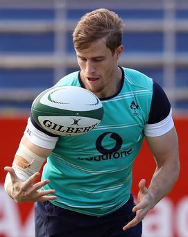 Strong focus: Andrew Trimble believes Ireland can still claim the series victory