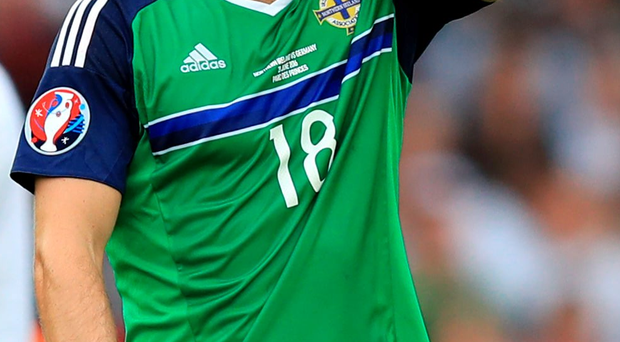 Vital experience: Aaron Hughes has been in fine form for Northern Ireland at the Euro 2016 finals