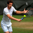 Speed star: Andy Murray wants to fly through the early rounds of Wimbledon to save himself for later challenges