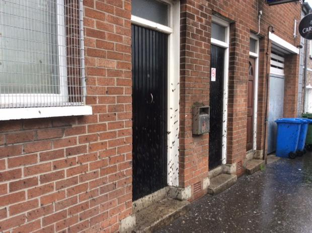 Houses and businesses in Co Down were sprayed during the incident.