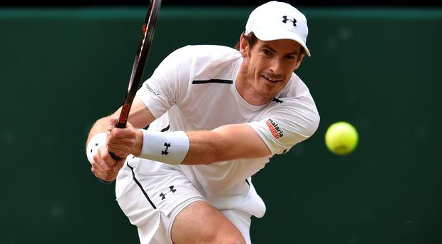 Eyes on the ball: Andy Murray took under two hours to see off Tomas Berdych in the semis