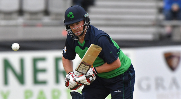 Staying put: Defiant William Porterfield has insisted that he has no plans to step down as Ireland captain