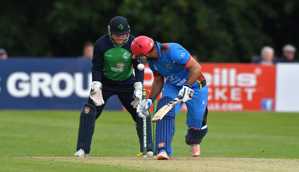 Off you go: Ireland wicket keeper Stuart Poynter watches as Samiullah Shenwari is bowled by George Dockrell during Afghanistan's 39-run victory at Stormont