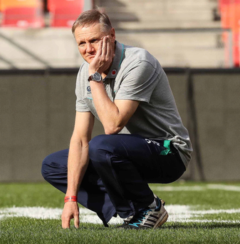 Decision time: Joe Schmidt has been given option to extend his contract until the 2019 World Cup