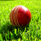 'Waringstown, the holders, wasted no time in disposing of North County, the game completed in exactly 50 overs as they reached their victory target of 108 for the loss of just two wickets' (stock photo)