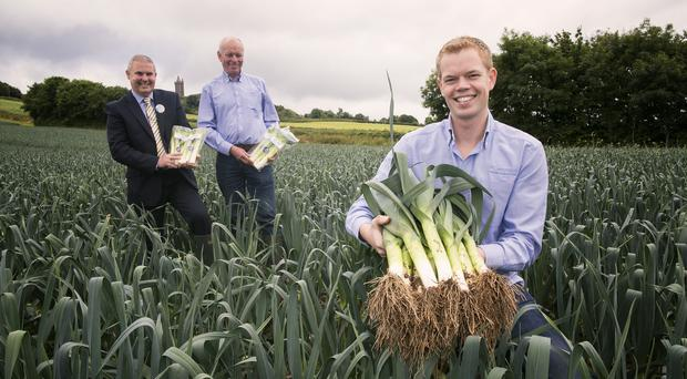 Tony O'Neill (left), manager of Tesco in Newtownards, with Roy and Alexander Lyttle on their farm in the Ards Peninsula, where they've used technology to get leeks onto the shelves more quickly