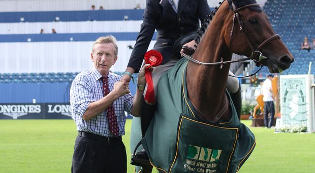 Champions: Peter Smyth and Templepatrick Welcome Diamond, winners of the six-year-old class, with Horse Sport Ireland Chairman Pat Wall at the Dublin Horse Show