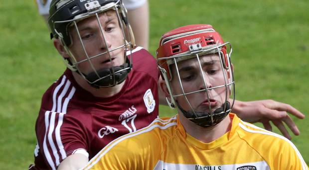 Calm head: Antrim's Conor Carson aims to keep hold of possession