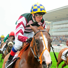 Pipe dream: Creggs Pipes, with Declan McDonogh aboard, wins last night's Galway Festival feature, the BMW Mile Handicap