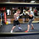 Fighting fit: Carl Frampton and Shane McGuigan go through their paces at Champs Gym in New Rochelle, New York