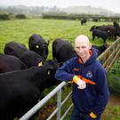 Andrew Gill who is battling cancer, tends to cattle on the family farm in Saintfield