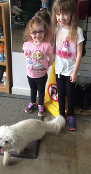 Sarah and Florence with their beloved family pet Alfie who has been missing since last Saturday