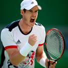 Andy Murray of Great Britain celebrates after defeating Steve Johnson of the United States 6-0, 4-6, 7-6 (2) in the Men's Singles Quarterfinal on Day 7 of the Rio 2016 Olympic Games at the Olympic Tennis Centre on August 12, 2016 in Rio de Janeiro, Brazil. (Photo by Mark Kolbe/Getty Images)