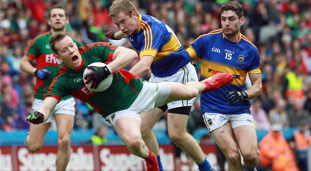 Hold on: Mayo's Cillian O'Connor (left) clashes with Brian Fox