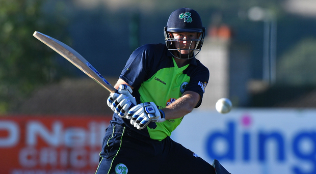 Positive impression: Greg Thompson (pictured) and Jacob Mulder have caught Ireland coach John Bracewell's eye